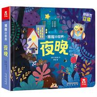 《乐乐趣·揭秘小世界:夜晚》3D立体书