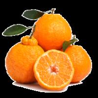 移动端、京东PLUS会员 : 美果汇 四川不知火丑橘 精品果 2.5斤装 *2件