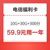 中国电信 福利卡(10G通用 30G定向 300分钟,视频VIP会员12个月4选1)